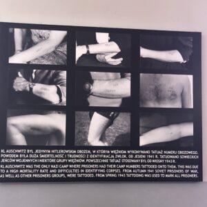 Infotahvel I. Auschwitzi laagris tattoode kohta.
